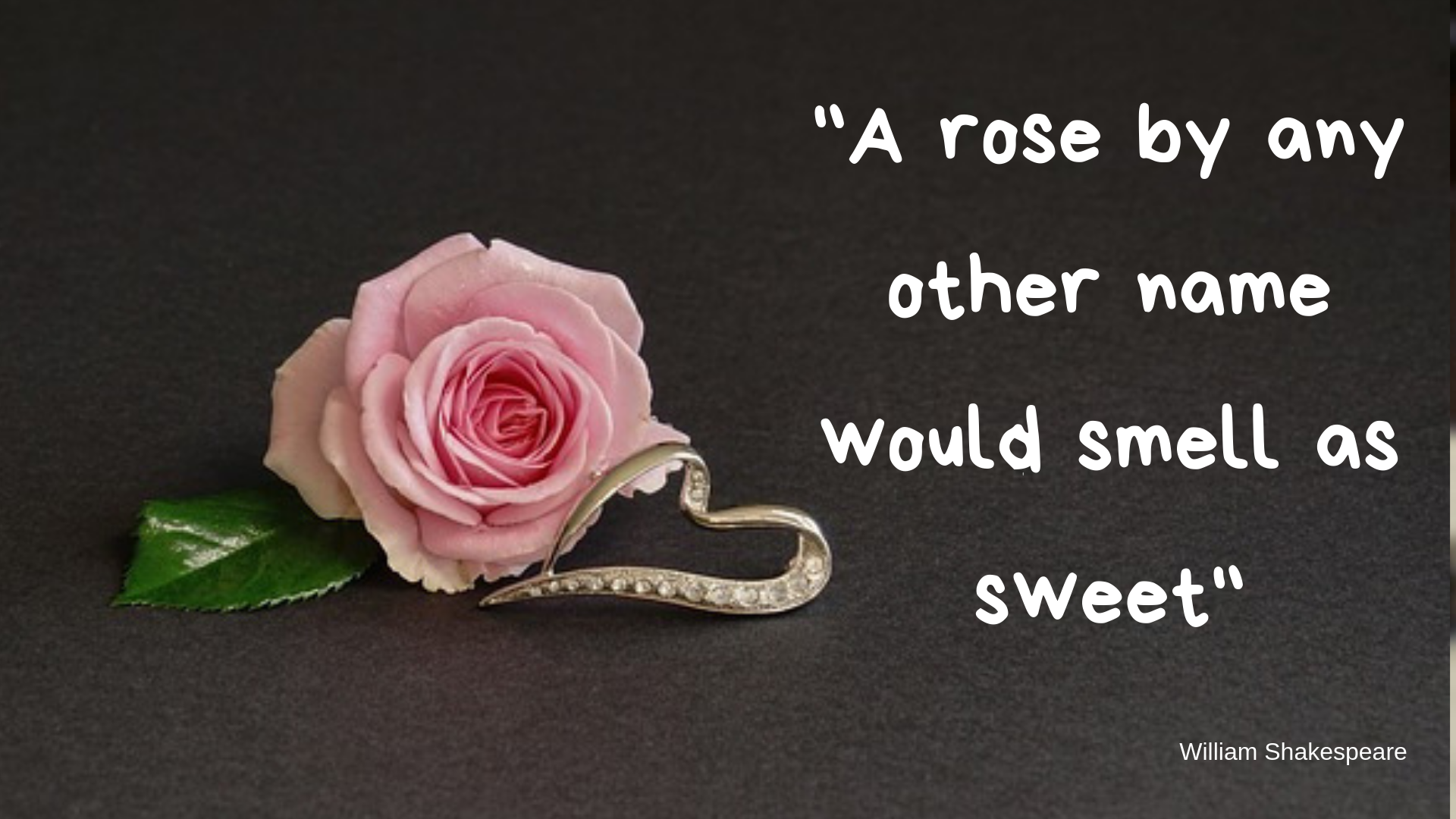 "A poster quote showing a single pink rose lying beside a silver heart shaped pendant. Text: ""A rose by any other name would smell as sweet"" W Shakespeare"