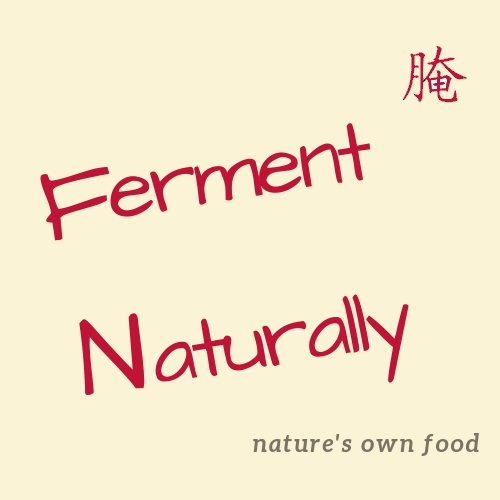 "Images shows a poster labeled ""Ferment Naturaly"" and slogan ""nature's own food"""
