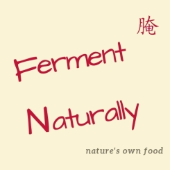 """Images shows a poster labeled """"Ferment Naturaly"""" and slogan """"nature's own food"""""""